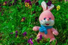 Liebres suaves del rosa del juguete del ` s de los niños en verano en la hierba verde entre las flores Fotografía de archivo