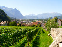Liechtenstein Stock Photo