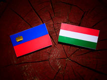 Liechtenstein flag with Hungarian flag on a tree stump isolated vector illustration
