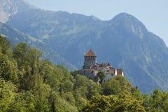 Liechtenstein - Vaduz - Vaduz-het kasteel Schloss Vaduz zijn pala Stock Afbeelding