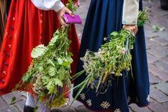 Lied en dansfestival in Letland Optocht in Riga Elementen van ornamenten en bloemen Letland 100 jaar Royalty-vrije Stock Afbeeldingen