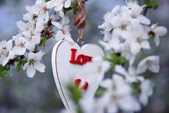 Liefde Stock Foto's