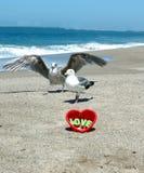 Liefde bij strand 3 stock afbeelding