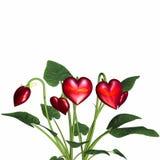 Liefde in Bloei 4 royalty-vrije illustratie