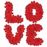 Liefde De vloer met bloemen wordt gemaakt die Bloemen ontwerp? achtergrond, achtergrond, illustratie Royalty-vrije Stock Foto