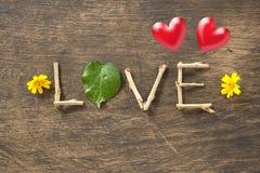 Liefde en hart-Vormig Bladeren en Rode hart Royalty-vrije Stock Afbeelding