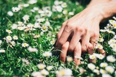 Liefde en hartstochtshanden op de lentebloemen Stock Foto