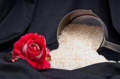 Liefde in het Koken Royalty-vrije Stock Foto's