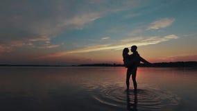 Liefde in het meer stock footage