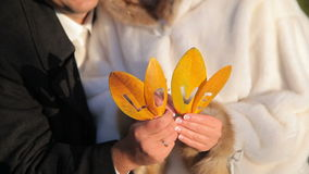 Liefde op de Gele Bladeren stock footage