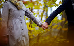 Liefde - Paar in bosholdingshanden Royalty-vrije Stock Afbeelding