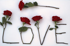 Liefde in rozen Stock Afbeelding