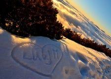 Liefde in sneeuw Royalty-vrije Stock Foto