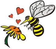 Liefde tussen bij en bloem Stock Foto