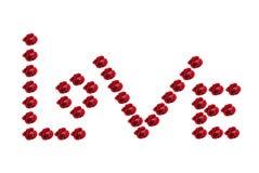 Liefde van Rode Rozen stock fotografie