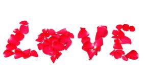 Liefde van roze die bloemblaadjes op witte achtergrond wordt geïsoleerd Stock Foto's