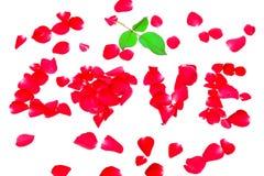 Liefde van roze die bloemblaadjes op witte achtergrond wordt geïsoleerd Royalty-vrije Stock Foto's