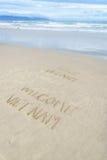 Liefde Vietnam Welkom die Vietnam in zand wordt geschreven Royalty-vrije Stock Foto