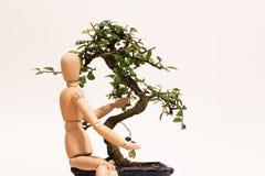 Liefdebonsai met marionet Royalty-vrije Stock Fotografie