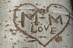 Liefdegraffiti op een boom Royalty-vrije Stock Afbeelding