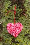 Liefdehart het hangen op een boom Natuurlijke achtergrond Stock Foto