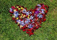 Liefdehart van bloemen wordt gemaakt die Stock Foto