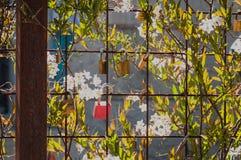 Liefdesloten op omheining met bloemen Royalty-vrije Stock Afbeeldingen