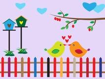 Liefdevogel Stock Afbeelding