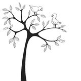 Liefdevogels Royalty-vrije Stock Foto