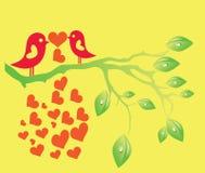 Liefdevogels Stock Foto's