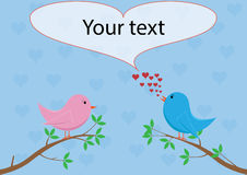 Liefdevogels die liefdelied zingen Stock Foto
