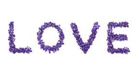 Liefdewoord met bloemen wordt op witte achtergrond worden geïsoleerd geschreven die De tekst van de viooltjesliefde De kaart van  stock afbeeldingen