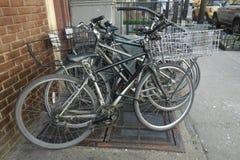 Lieferungs-Fahrräder Lizenzfreie Stockfotografie