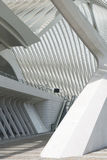 Liege-Guillemins Royalty Free Stock Image