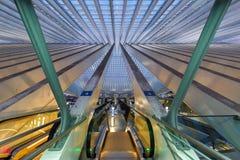 Liege Guillemins drevjärnvägsstation Santiago Calatrava Belgiu Royaltyfri Bild
