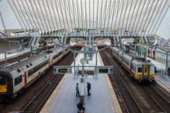 Liege-Guillemins järnvägsstation Fotografering för Bildbyråer