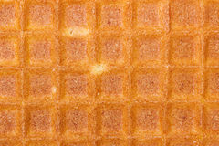 Liege waffles Royalty Free Stock Photos