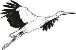 Liegender weißer Storch Lizenzfreie Stockbilder