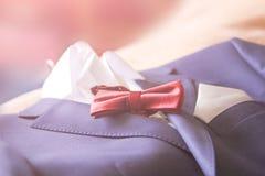 Lien de papillon de costume de mariage Photographie stock libre de droits