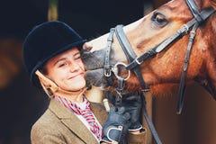 Lien entre le cheval et le cavalier Image stock