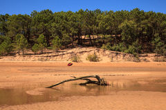 Liencres dunes nature reserve Stock Images