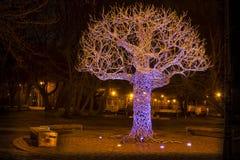 LIEPAJA, LETTONIA - marzo 2017: Albero memorabile del posto dei fantasmi Fotografie Stock Libere da Diritti