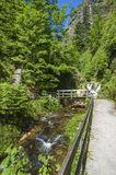 The Lier-brook with the All Saints waterfalls in Oppenau Stock Photo