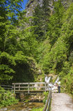 The Lier-brook with the All Saints waterfalls in Oppenau Royalty Free Stock Image