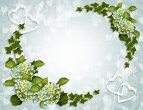 lierre floral d'invitation de hydrangea de cadre Image libre de droits