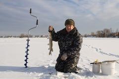 lies för fiskeis bara blockerade vinterzander Royaltyfria Bilder