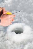 lies för fiskeis bara blockerade vinterzander Fotografering för Bildbyråer
