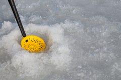 lies för fiskeis bara blockerade vinterzander Royaltyfri Foto