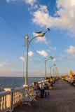 Lieu de repos de bord de la mer Photographie stock