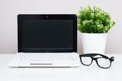 Lieu de travail dans la maison ou le bureau - ordinateur, verres et usine en Th Photos stock